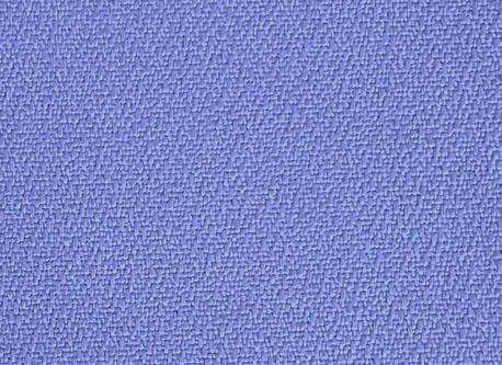 CS353 (BLUE)